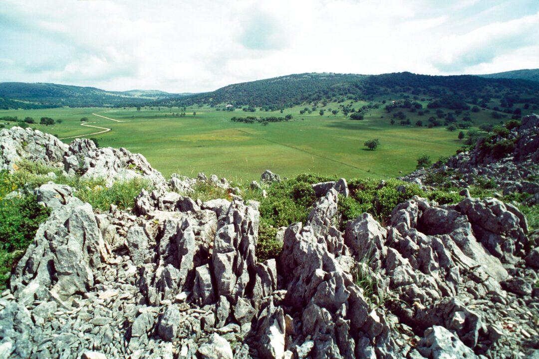 El Parque Natural Sierras Subbéticas acoge lasexta Olimpiada de Geología de Córdoba
