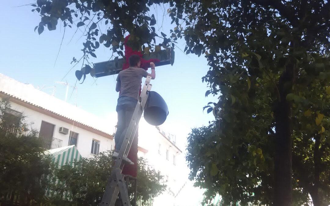 Cruces y patios: comienzan las principales citas del Mayo Cordobés